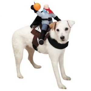 #1 Headless Horseman dog costume