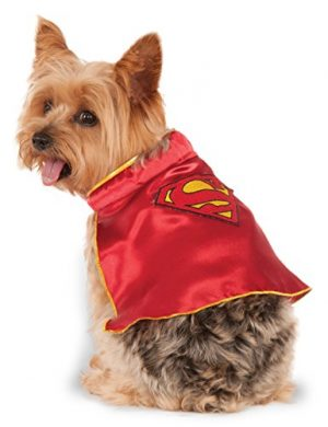 DC Comics Super Girl Pet Cape, Small