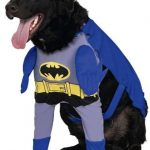 Batman Dog Costume – Large