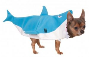 #1 Shark dog costume