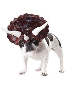 #1 Triceratops dog costume