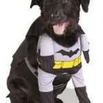 Batman Dog Pet Costume – X-Small