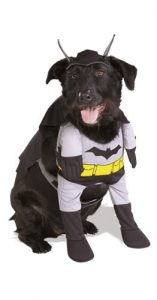 #1 Batman Dog Costume