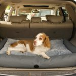 Dog Travel and SUV Bed