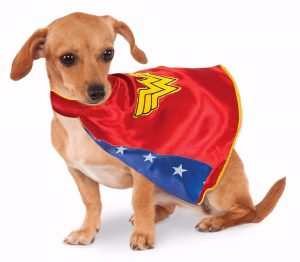 Chihuahua Wonder Woman